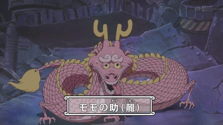 Episodio 611 – Il piccolo drago! Momonosuke viene rivelato