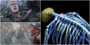 titano corazzato