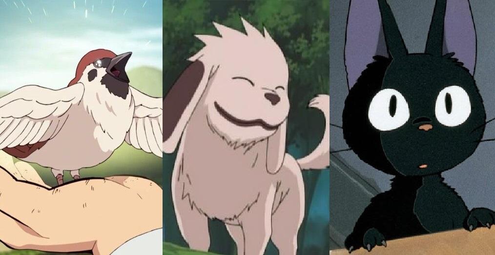 animali domestici degli anime