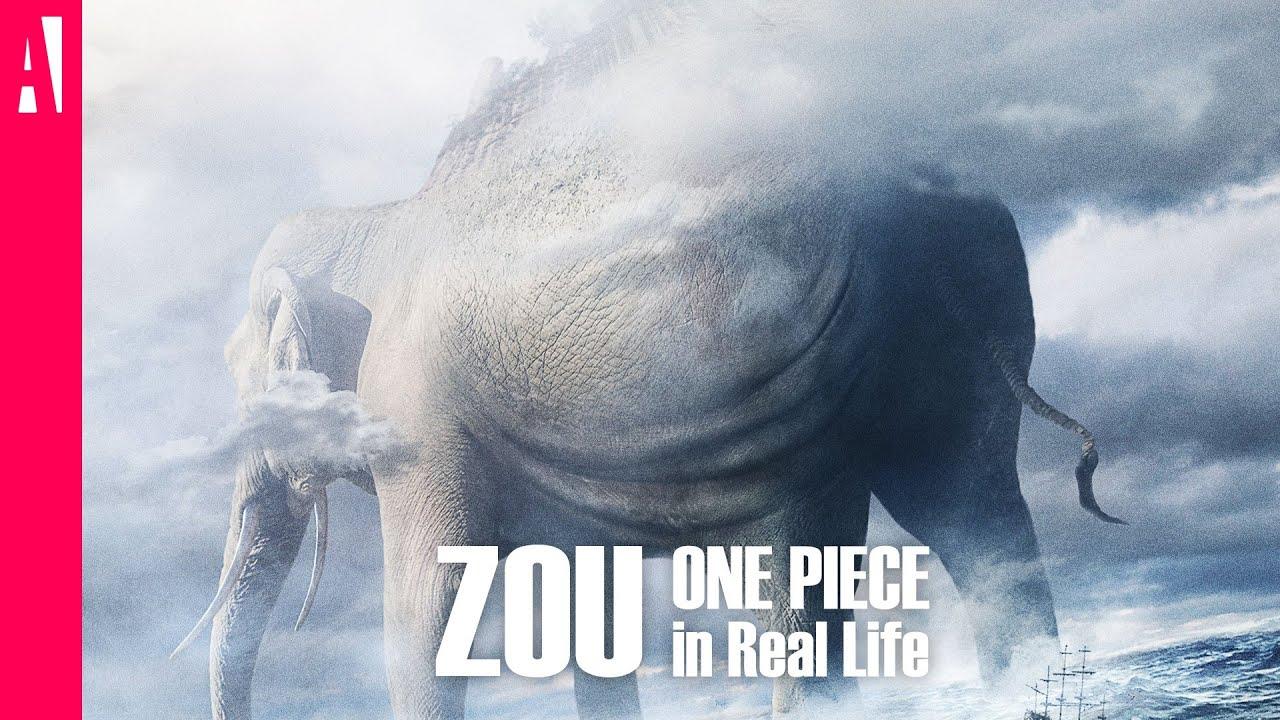 zunisha e zou nella vita reale