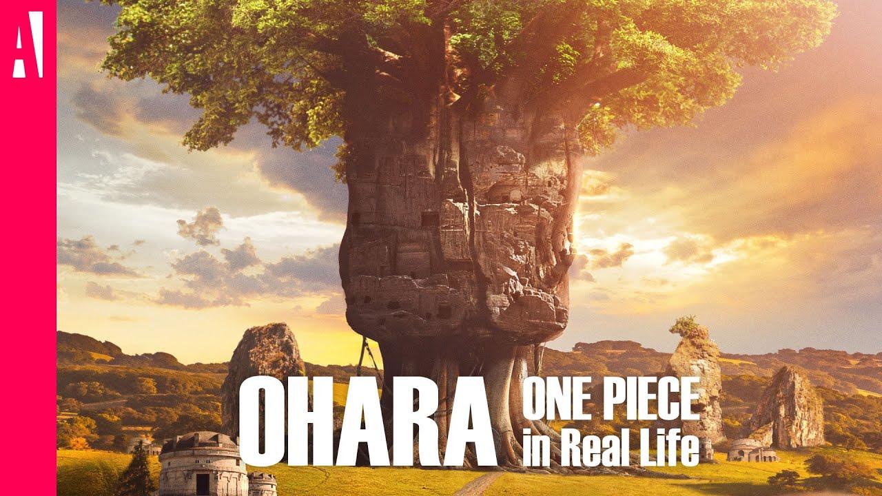 ohara nella vita reale